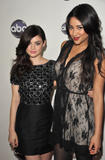 http://img156.imagevenue.com/loc203/th_97311_Lucy_Hale_Disney_Winter_Press_Tour_032_122_203lo.jpg